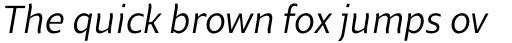 Beret Book Italic sample
