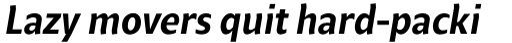 Beret Medium Italic sample