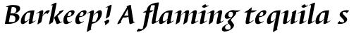 Barbedor Bold Italic sample