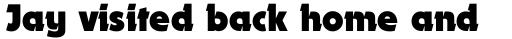 Dynamo Bold sample