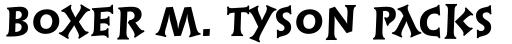 Syntax Lapidar Serif Display Heavy sample