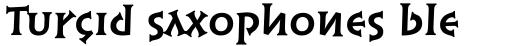 Syntax Lapidar Serif Text Bold sample