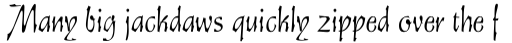 Staehle Graphia Script Regular sample