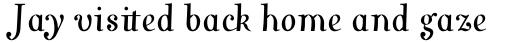 Varius 1 LT Std Italic sample