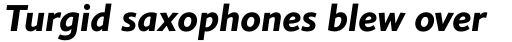 Elisar DT Bold Italic sample