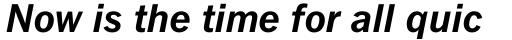 Fuller Sans DT Bold Italic sample
