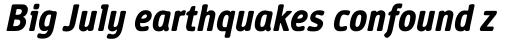 Vecta DT Bold Italic sample