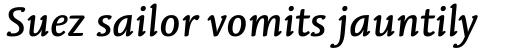 Linotype Syntax Letter Medium Italic sample