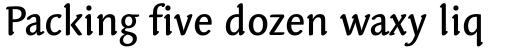 Linotype Syntax Letter Medium sample