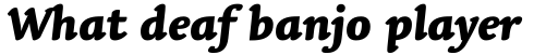 Linotype Syntax Letter Heavy Italic sample