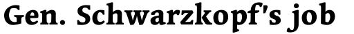 Linotype Syntax Serif Heavy sample