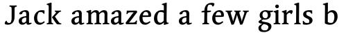 Linotype Syntax Serif OsF Medium sample