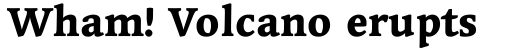 Linotype Syntax Serif OsF Heavy sample