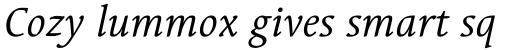Linotype Syntax Serif Italic sample