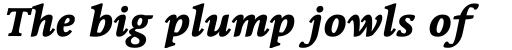 Linotype Syntax Serif Heavy Italic sample