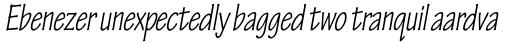 Tekton Pro Condensed Oblique sample