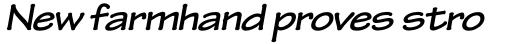 Tekton Pro Extended Bold Oblique sample