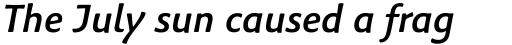 Palatino Sans Informal Medium Italic sample