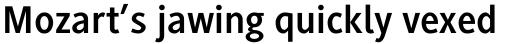Generis Sans Com Bold sample