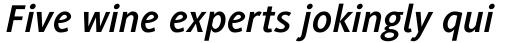 Generis Sans Com Bold Italic sample