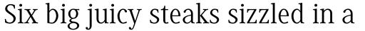 Generis Serif Com Regular sample
