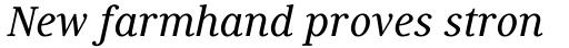 Generis Serif Com Medium Italic sample