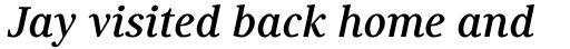 Generis Serif Com Bold Italic sample