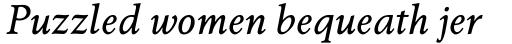 Berling Nova Pro Text Regular Italic sample