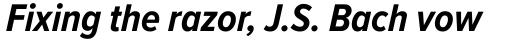 Proxima Nova A Cond Bold Italic sample