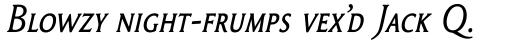 Garaline Expert Italic sample