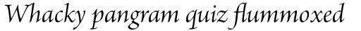 Brioso Pro SubHead Italic sample