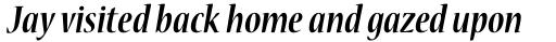 Nueva Std Cond Bold Italic sample