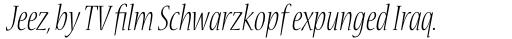 Nueva Std Cond Light Italic sample