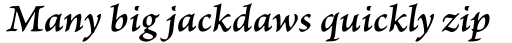 Brioso Pro Caption SemiBold Italic sample