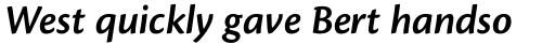 Cronos Pro SemiBold Italic sample