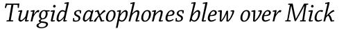 Chaparral Pro SubHead Italic sample