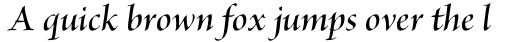 Brioso Pro Display SemiBold Italic sample