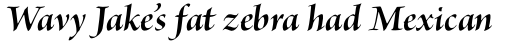 Brioso Pro Display Bold Italic sample