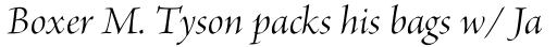 Brioso Pro Display Italic sample