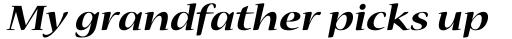 Nueva Std Ext Bold Italic sample