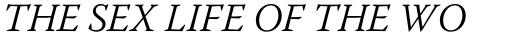 Warnock Pro Light Italic sample