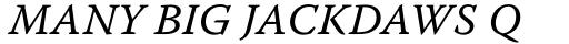 Warnock Pro Caption Italic sample