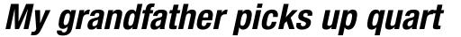 Helvetica Neue LT Std 77 Bold Condensed Oblique sample