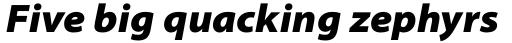 Myriad Pro SemiExt Black Italic sample