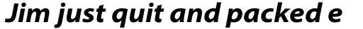 Myriad Pro SemiExt Bold Italic sample