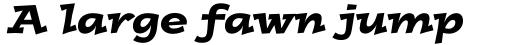 Postino Std Italic sample
