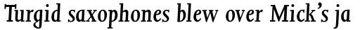 Joanna MT Std SemiBold Italic sample