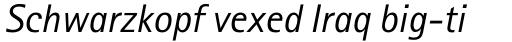 Rotis Sans Serif Std Italic sample