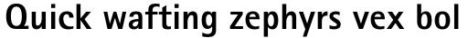 Rotis Sans Serif Std ExtraBold sample