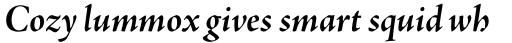 Adobe Jenson Pro SubHead Bold Italic sample